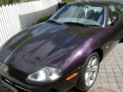 kari-jaguar